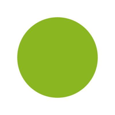 Enrollador con Manguera 10M Verde